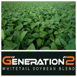 Gen2 Soybeans & Northern Blend: Whitetail Soybeans